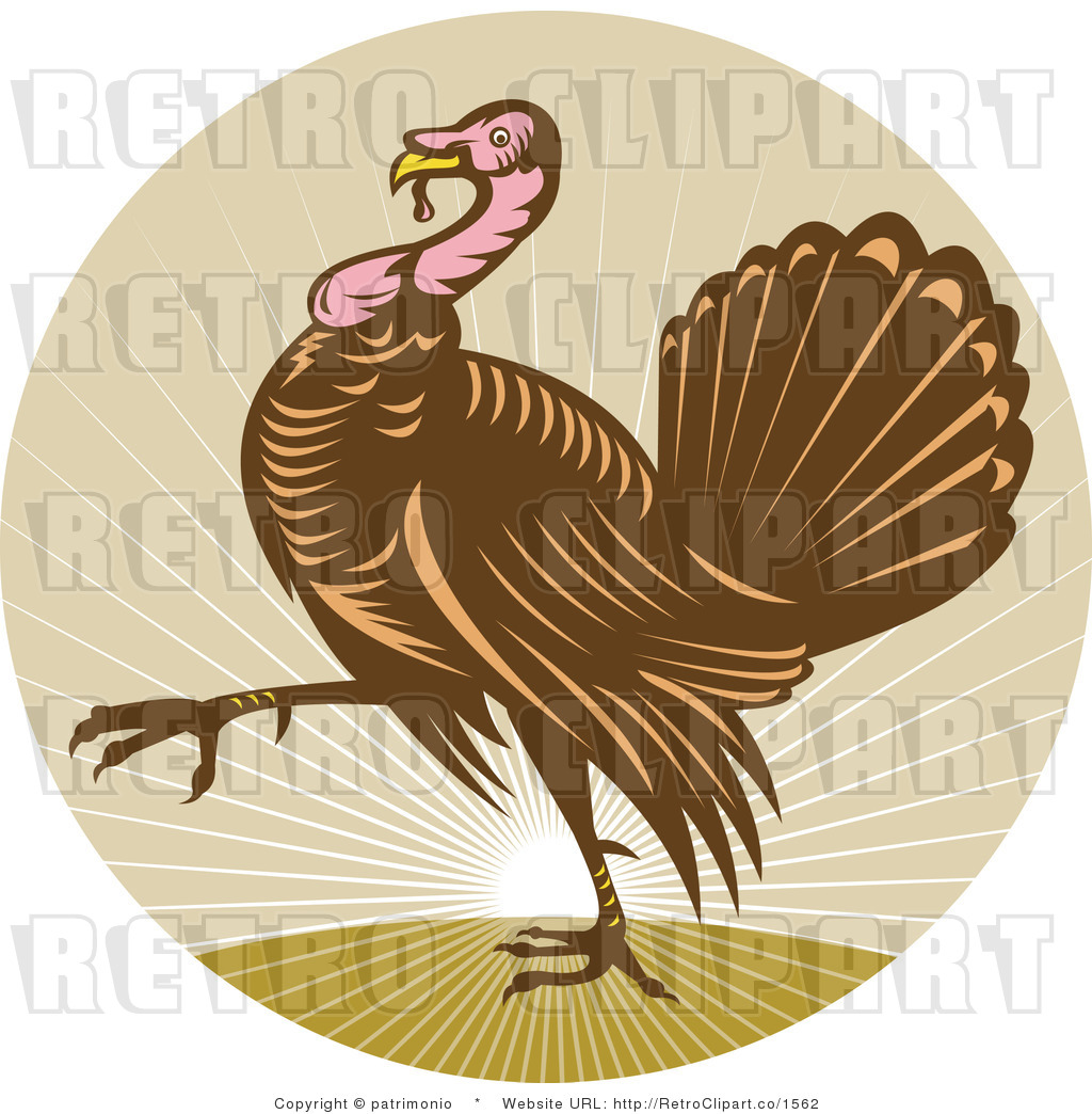 royalty free vector retro illustration of an adult turkey walking with sun rising in the background by patrimonio 1562 ... and has given many generations of families both education and joy.