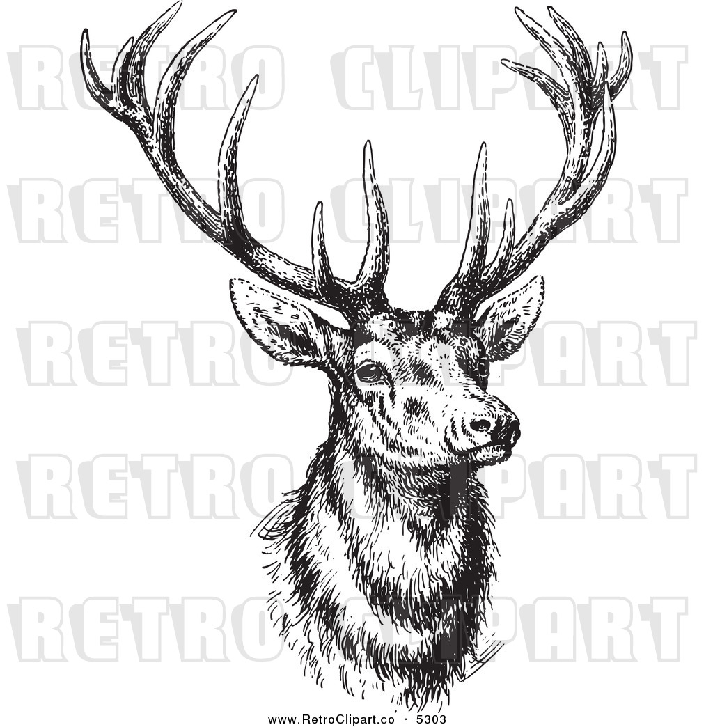 HD wallpapers coloring pages of hunting dogs
