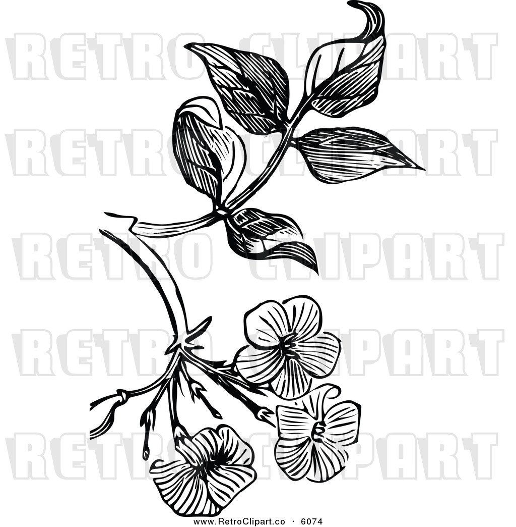 jasmin clip art black and white joy studio design