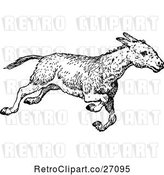 Clip Art of Donkey Running by Prawny Vintage