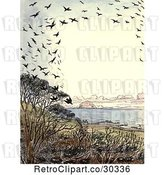 Clip Art of Frame of Crows over a Beach by Prawny Vintage