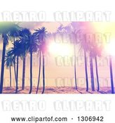 Clip Art of Retro 3d Designed Sunset Sky and Sunshine Through Palm Trees on a Tropical Beach by KJ Pargeter