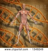 Clip Art of Retro 3d Medical Anatomical Male with Visible Muscles over a DNA and Background by KJ Pargeter