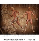 Clip Art of Retro 3d Medical Anatomical Men with Visible Muscles, Standing and Running over a DNA Background by KJ Pargeter