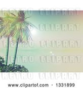 Clip Art of Retro 3d Tropical Island with Palm Trees and Shrubs, a Still Foggy Bay and Mountains by KJ Pargeter