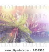 Clip Art of Retro 3d View Looking up at a Tropical Palm Tree Against Sky with Wispy Clouds and Flares by KJ Pargeter