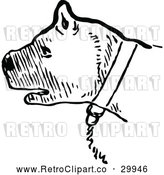 Vector Clip Art of a Retro Chained Pit Bull - Black and White by Prawny Vintage