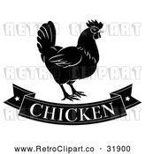 Vector Clip Art of a Retro 'Chicken' Banner Below a Hen in Black by AtStockIllustration