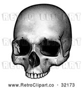 Vector Clip Art of a Retro Human Skull in Black and White by AtStockIllustration