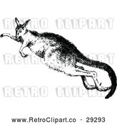 Vector Clip Art of a Retro Kangaroo Jumping by Prawny Vintage