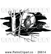 Vector Clip Art of a Retro Owl in a Tree by Prawny Vintage