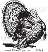 Vector Clip Art of a Retro Thanksgiving Turkey by BestVector