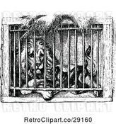 Vector Clip Art of Caged Lion and Dog by Prawny Vintage