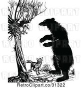 Vector Clip Art of Fox Vulture and a Standing Bear by Prawny Vintage