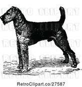 Vector Clip Art of Retro Airedale Terrier Dog by Prawny Vintage