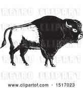 Vector Clip Art of Retro American Bison, in Woodcut by Patrimonio