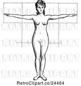 Vector Clip Art of Retro Anatomy of Female Proportions by Prawny Vintage