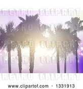 Vector Clip Art of Retro Background of Silhouetted Palm Trees with a Sunset Shining Through the Branches over Purple Flares by KJ Pargeter