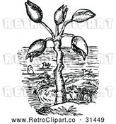 Vector Clip Art of Retro Barnacle Tree and Geese by Prawny Vintage