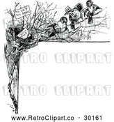 Vector Clip Art of Retro Bird Nest Border by Prawny Vintage