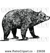 May 9th, 2018: Vector Clip Art of Retro Brown Bear by Prawny Vintage
