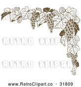 May 4th, 2018: Vector Clip Art of Retro Brown Grape Vine Corner Border by AtStockIllustration