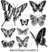 Vector Clip Art of Retro Butterflies 2 by BestVector