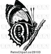 Vector Clip Art of Retro Butterfly on a Twig by Prawny Vintage