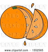 Vector Clip Art of Retro Cartoon Orange Slice by Lineartestpilot