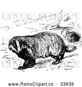 Vector Clip Art of Retro Common Badger by Prawny Vintage