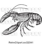 Vector Clip Art of Retro Crayfish by BestVector