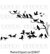 Vector Clip Art of Retro Crows in a Bare Tree by Prawny Vintage