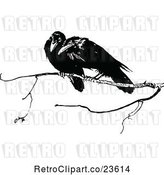 Vector Clip Art of Retro Crows on a Branch by Prawny Vintage