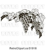 Vector Clip Art of Retro Dark Grapes and Leaves Border by AtStockIllustration