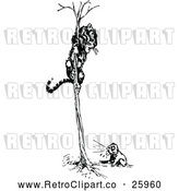 Vector Clip Art of Retro Dog Chasing a Tiger in a Tree by Prawny Vintage