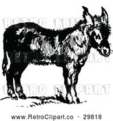 Vector Clip Art of Retro Donkey by Prawny Vintage