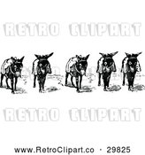 Vector Clip Art of Retro Donkeys by Prawny Vintage