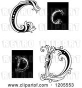 Vector Clip Art of Retro Floral Letter C and D 2 by Vector Tradition SM