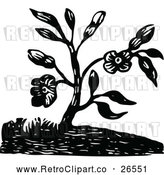 Vector Clip Art of Retro Flowering Plant by Prawny Vintage