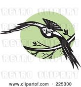 Vector Clip Art of Retro Flying Raven and Green Circle Logo by Patrimonio
