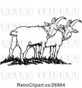 Vector Clip Art of Retro Goats by Prawny Vintage