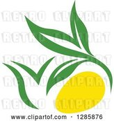 Vector Clip Art of Retro Green and Yellow Tea Pot with Leaves 5 by Vector Tradition SM