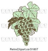 Vector Clip Art of Retro Gren Grapes with Leaves in Woodblock by AtStockIllustration