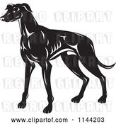 Vector Clip Art of Retro Greyhound Dog by Patrimonio