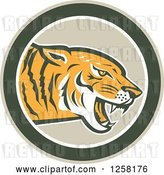 Vector Clip Art of Retro Growling Tiger Head in a Green Circle by Patrimonio