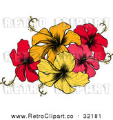August 21st, 2017: Vector Clip Art of Retro Hibiscus Flowers by AtStockIllustration