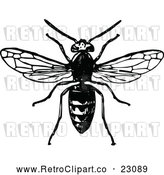 Vector Clip Art of Retro Hornet by Prawny Vintage