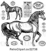 Vector Clip Art of Retro Horses and Post Stamps by BestVector