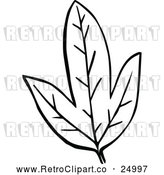 Vector Clip Art of Retro Leaf by Prawny Vintage