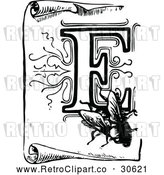 Vector Clip Art of Retro Letter F and Fly on a Scroll by Prawny Vintage